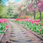 Ładny oraz schludny ogród to zasługa wielu godzin spędzonych  w jego zaciszu w toku pielegnacji.